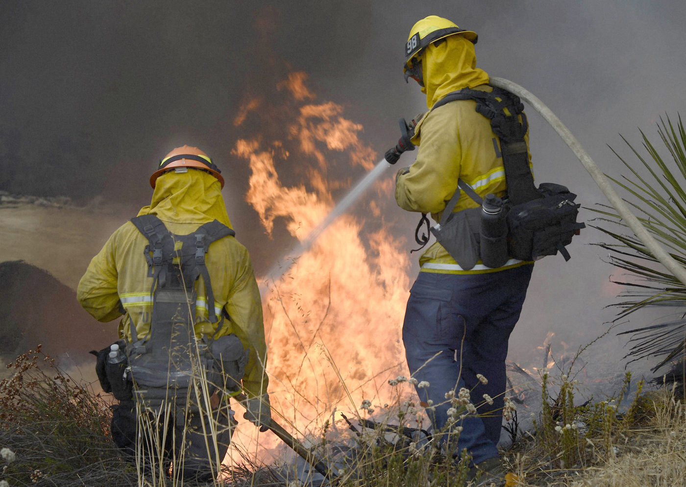 firefighters in uniform spraying a bush fire with a hose of water