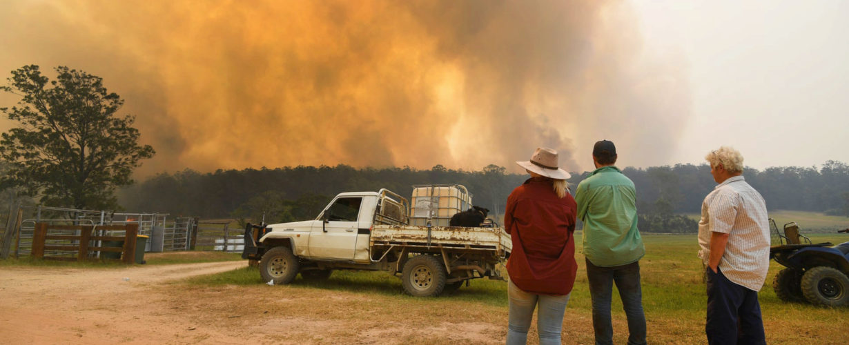 A group of three people shown from behind, standing by a truck and looking at smoke from a wildfire