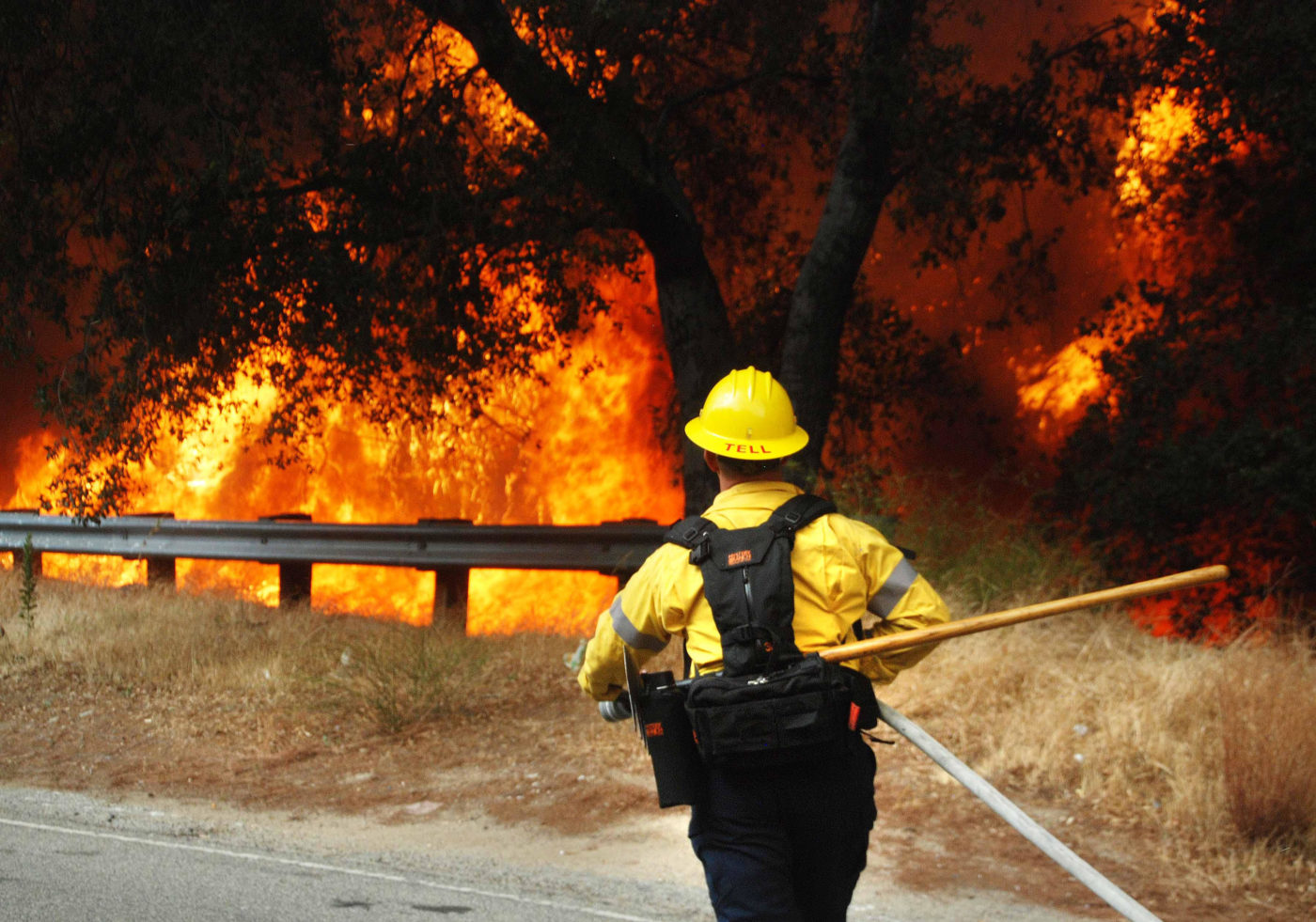 a firefighter runs towards a forest fire