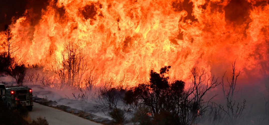 a large roadside forest fire